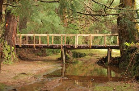 Rocha do Chambre | Wanderwege Azoren