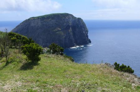 PRC5FAIRumo ao Morro de Castelo Branco - Maps and GPS Tracks - Hiking Routes in Faial - Trails in Azores