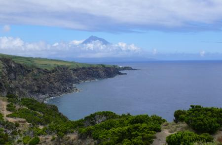 PRC5FAI Rumo ao Morro de Castelo Branco - Maps and GPS Tracks - Hiking Routes in Faial - Trails in Azores