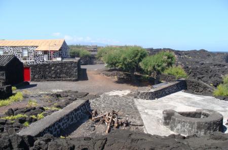 PR10PICSantana – Lajido - Mapas e GPS - Percurso Pedestre no Pico - Trilhos dos Açores