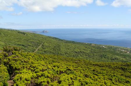 Capelo - Capelinhos - Maps and GPS Tracks - Hiking Routes in Faial - Trails in Azores