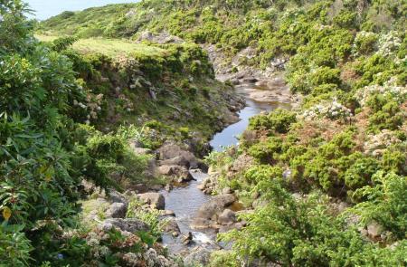 Pr1flo Ponta Delgada Faj 227 Grande Maps And Gps Tracks