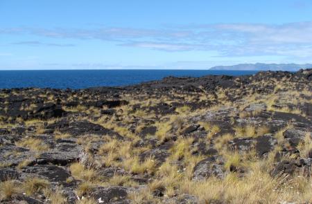 Caminhos de Santa Luzia - Mapas e GPS - Percurso Pedestre no Pico - Trilhos dos Açores