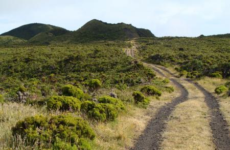 PR2PICCaminho dos Burros: vertente Norte - Mapas e GPS - Percurso Pedestre no Pico - Trilhos dos Açores