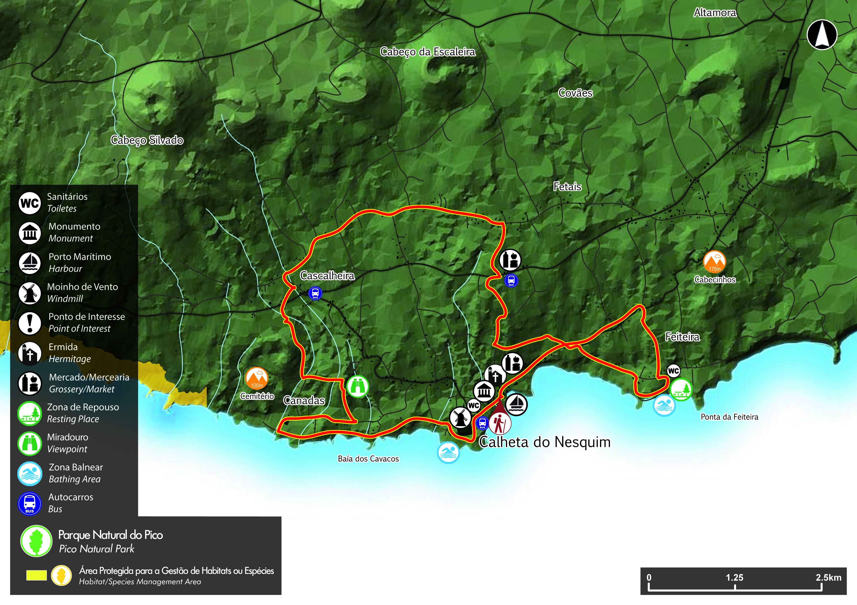 Google Earth Map Pico Island Azores